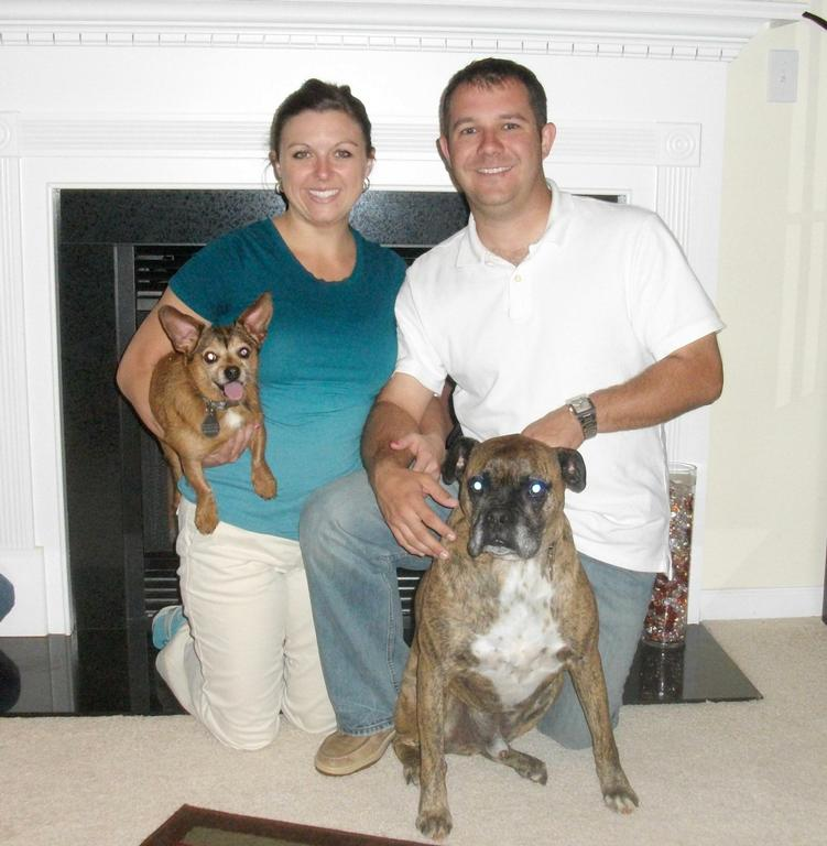 Bark Busters Home Dog Training Greenville Sc Greenville Sc