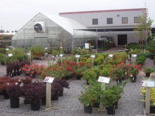 Beberg landscape nursery andover mn 55304 763 754 9491 for Home and landscape design andover mn