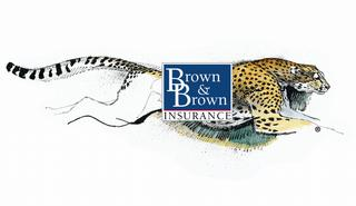 Brown & Brown Insurance - Mankato, MN