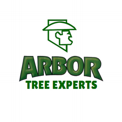 Jersey Shore Tree Service-Arbor Tree Experts-Mike McCabe