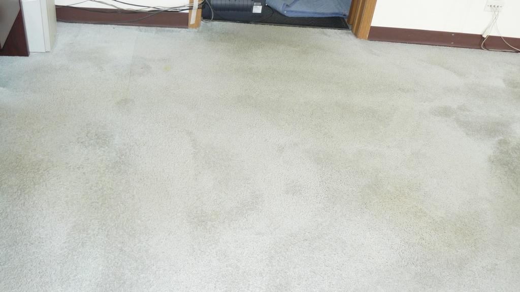 Carpet Cleaners In Mchenry Illinois Carpet Vidalondon