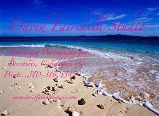 David Fairchild Studio - Redondo Beach, CA