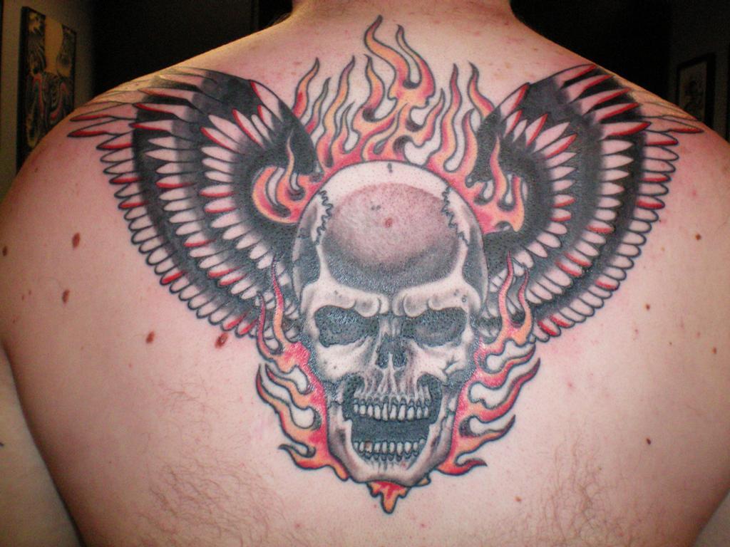 zebra tattoos piercing in berkeley berkeley ca 94704