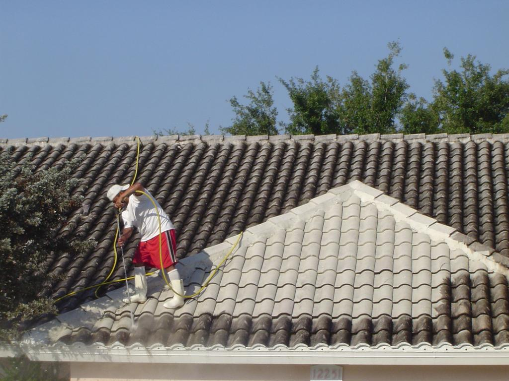 Image Result For Roof Cleaning Naples Fl