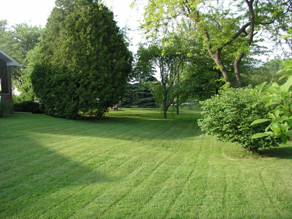 Backyard from turf and tree llc insured lawn care service for Pics of landscaped backyards