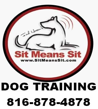 Sit Means Sit Dog Training Prices