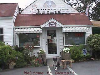 Swan's Candles - Lakewood, WA