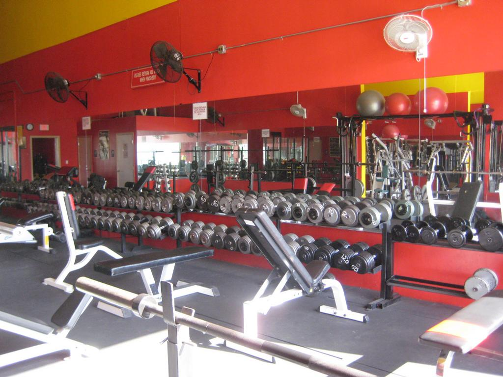 no limit fitness inc miami fl 33186 786 249 1088 health clubs. Black Bedroom Furniture Sets. Home Design Ideas