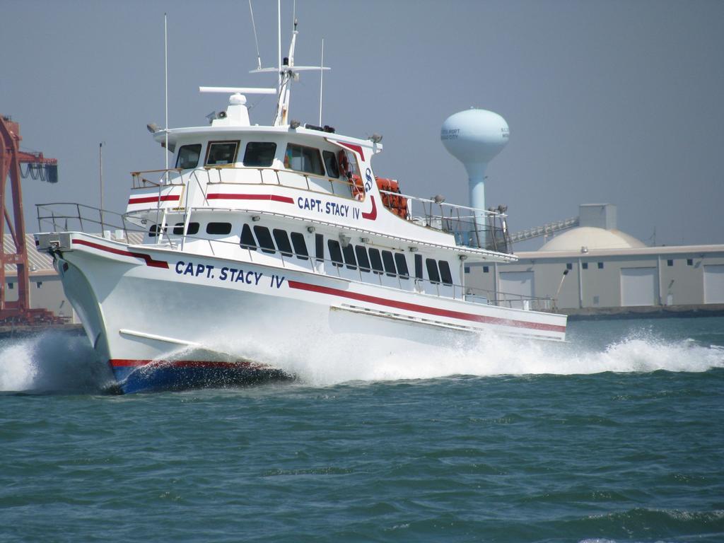 Capt stacy fishing center atlantic beach nc 28512 800 for Capt stacy fishing center