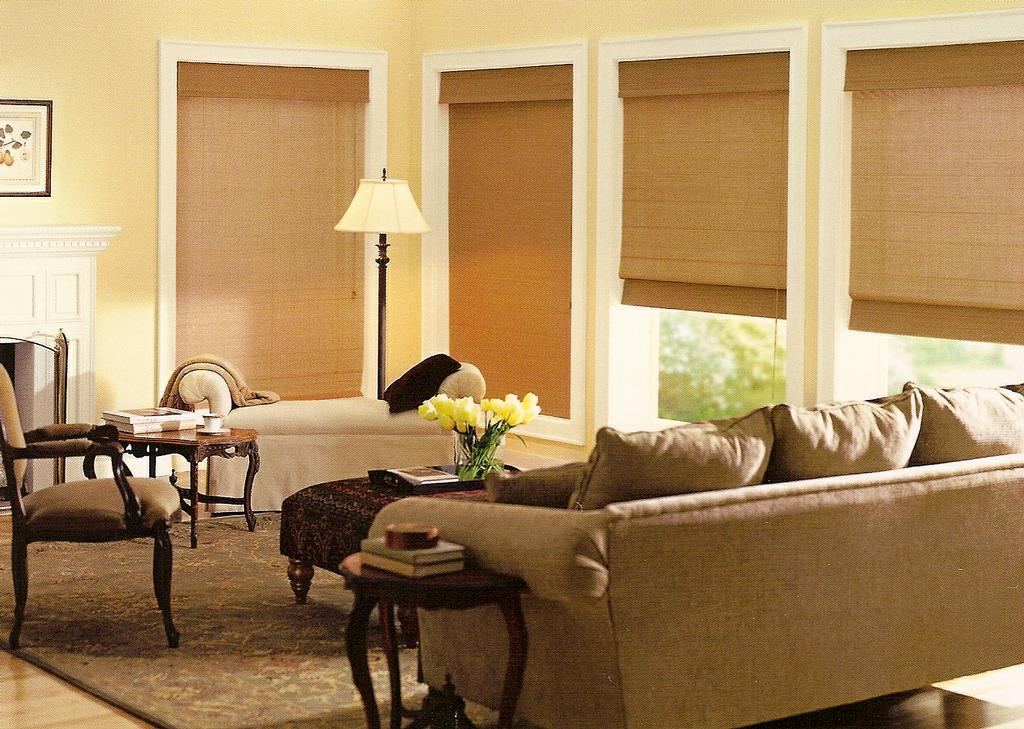 Pictures for sol x screens and shades in san antonio tx 78216 for Motorized roll up shades