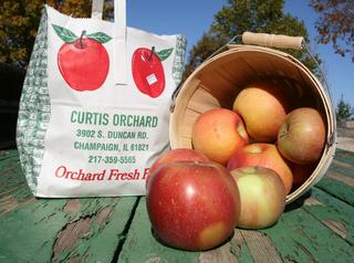 Curtis Orchard & Pumpkin Patch - Champaign, IL