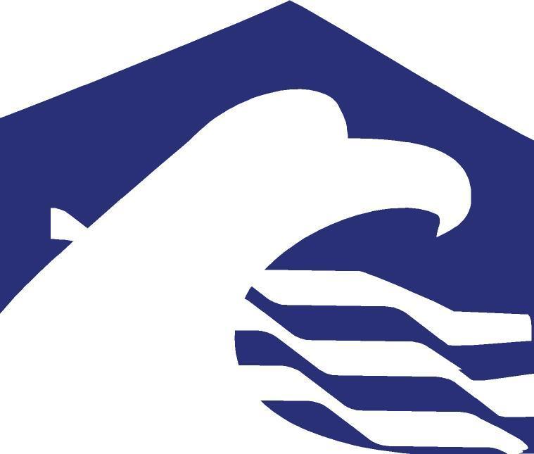 American Pride Home Inspections Richmond Va 23235 804
