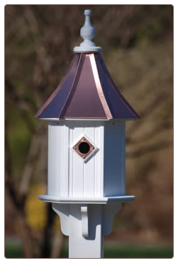 Pictures For The Birdhouse Chick In Dallas Ga 30132