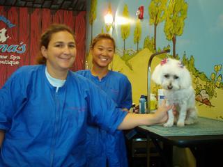 Shauna's Paw Spa-Pet Boutique - Surprise, AZ
