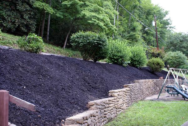 Hillside after photo from green thumb landscaping and tree - Ideas for hillside landscape ...
