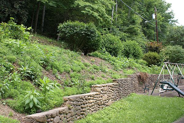 Fast design hillside landscaping ideas pictures for Hillside landscaping