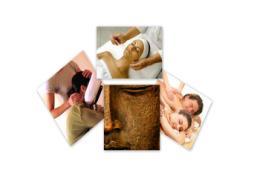 Zen Experience Massage & Wellness - Minneapolis, MN