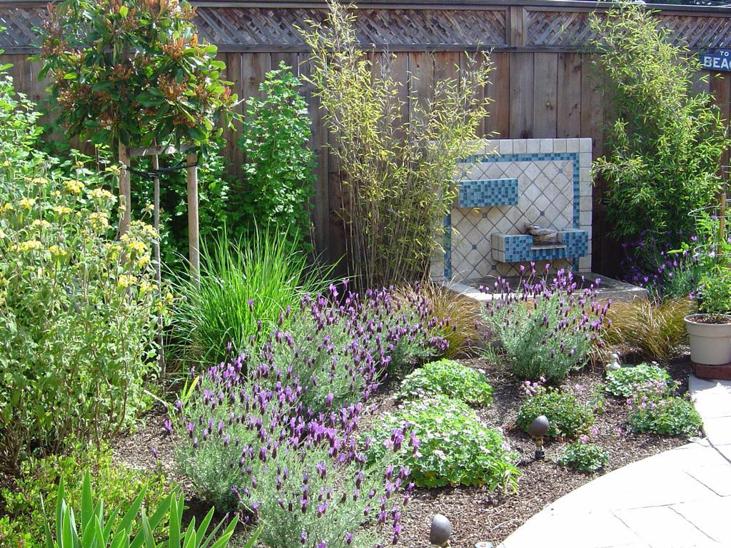 Modern water feature and cut flower garden from julie orr for Cut flower garden designs
