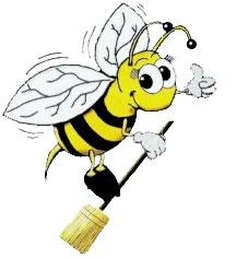 how to clean bee poo