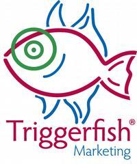 Triggerfish Marketing - San Francisco, CA