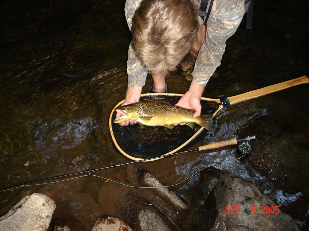 Trophy trout cherokee north carolina guided trip from for Cherokee trout fishing