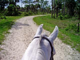 Sandi Trails - Jupiter, FL