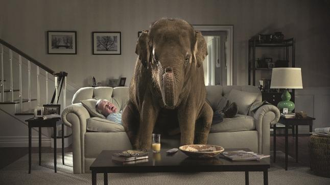 Garberville ca blogs blogs in garberville ca - The elephant in the living room full movie ...