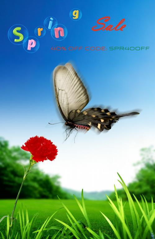 Spring - Graphic Design by Memory Imprint Studio Inc