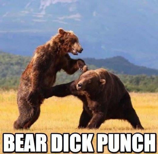 [Image: bear%20dick%20punch_full.jpeg]