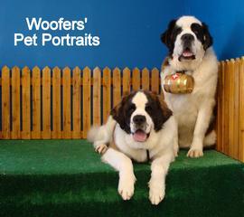 Woofers Grooming & Goodies - Spanaway, WA