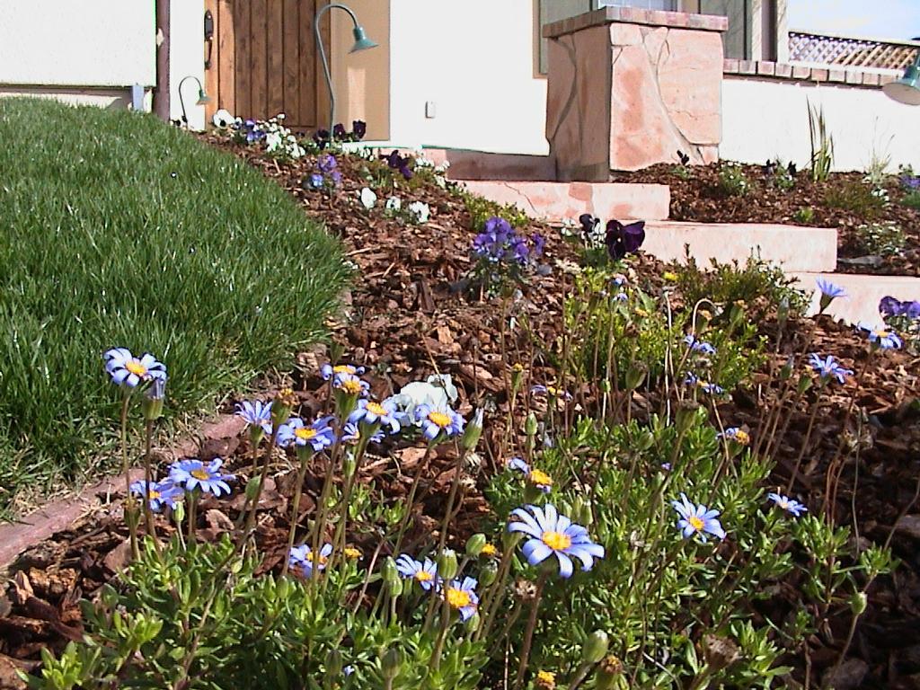 General landscaping service los gatos ca 95030 408 859 for General garden services