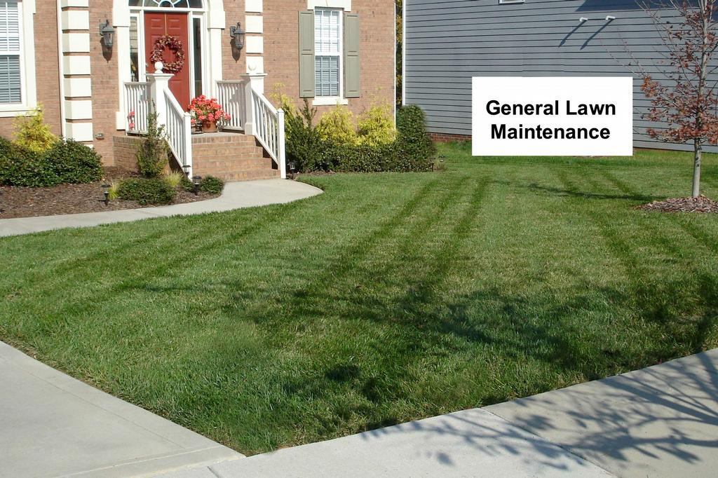 Premier turf llc huntersville nc 28078 704 575 8484 for General garden maintenance