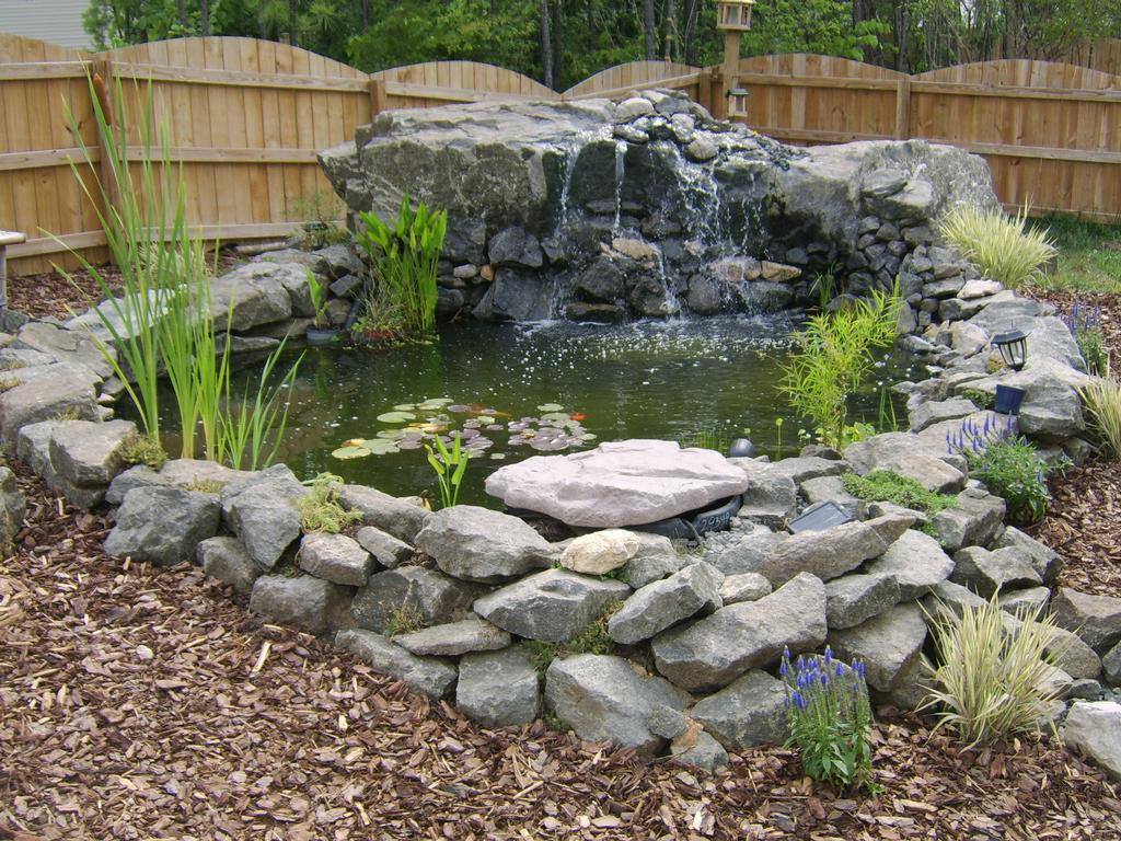 Pond 002 from cheap scapes landscaping in creedmoor nc 27522 for Cheap pond ideas