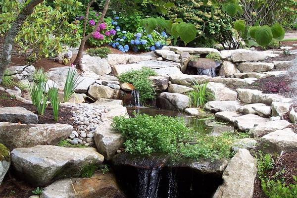 Grow A Green Garden-Landscape Design Ideas featuring Xeriscape ...