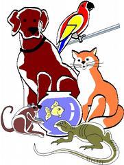 Happy Pets Pet Sitting Svc - Elizabeth City, NC