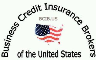 Business Credit Insurance - Plano, TX