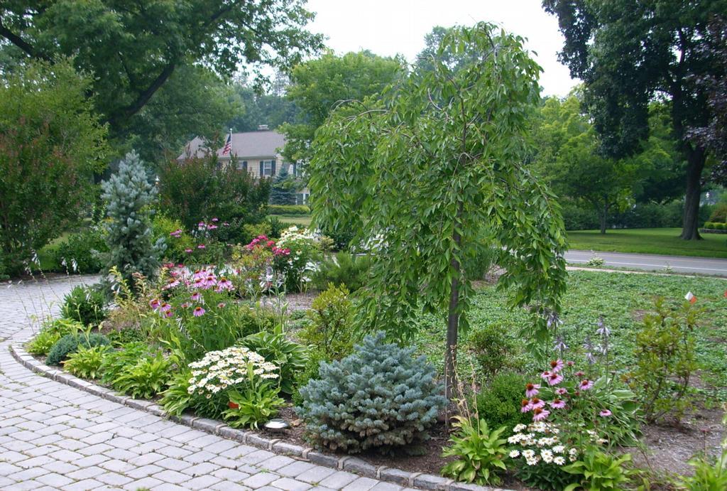 Garden masters llc landscape design nj glen ridge nj for Garden design llc