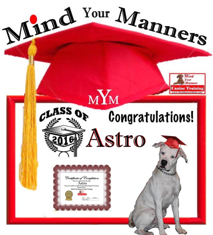 Mind Your Manners Dog Training