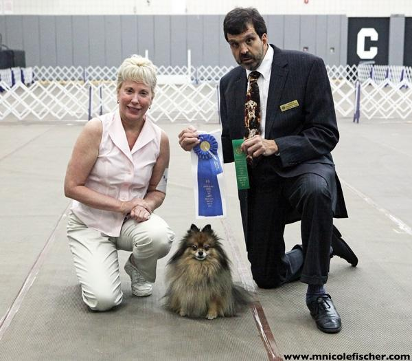 Kennel Club Dog Training Butler Nj