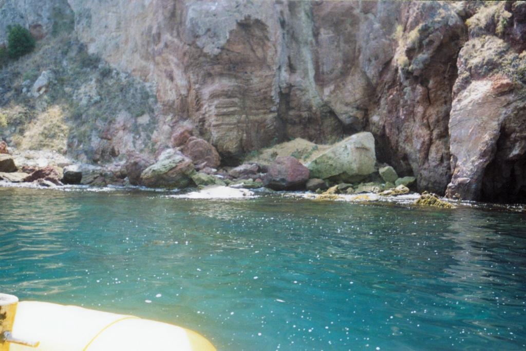Best Dive Spots Catalina Island
