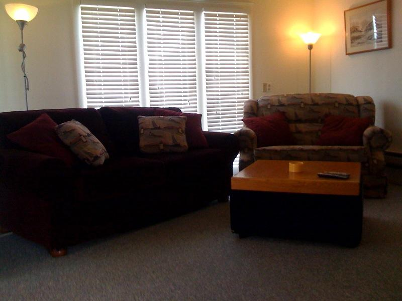 Sofas Both Fold Out Into Beds.jpg by Tenmile Marina and Vacation Rental, Inc