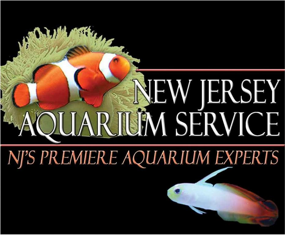 Professional writing services rates new jersey