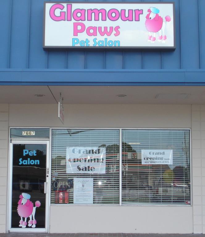Glamour paws pet salon seminole fl 33777 727 230 0688 for 4 paws pet salon