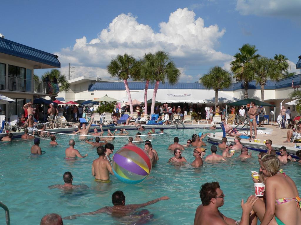 Book The Flamingo Resort - Gay Adult Resort in St