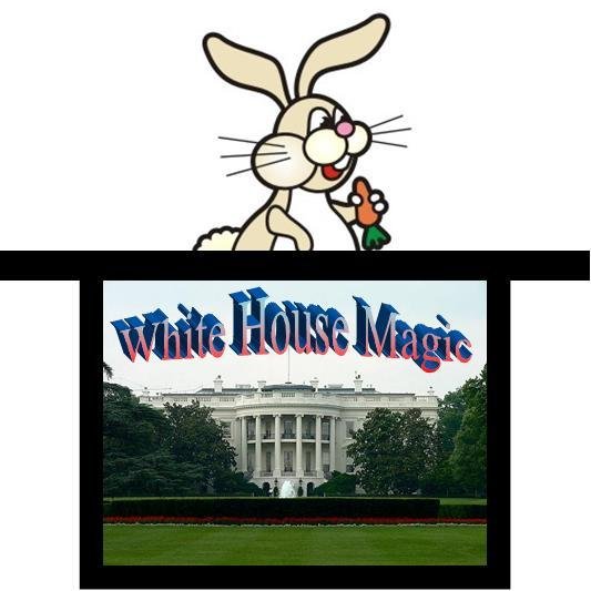 white house logo. White-House-Magic-logo.jpg