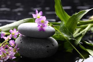 Wings Massage & Bodyworks - Homestead Business Directory