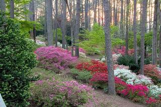 Callaway Gardens - Pine Mountain, GA