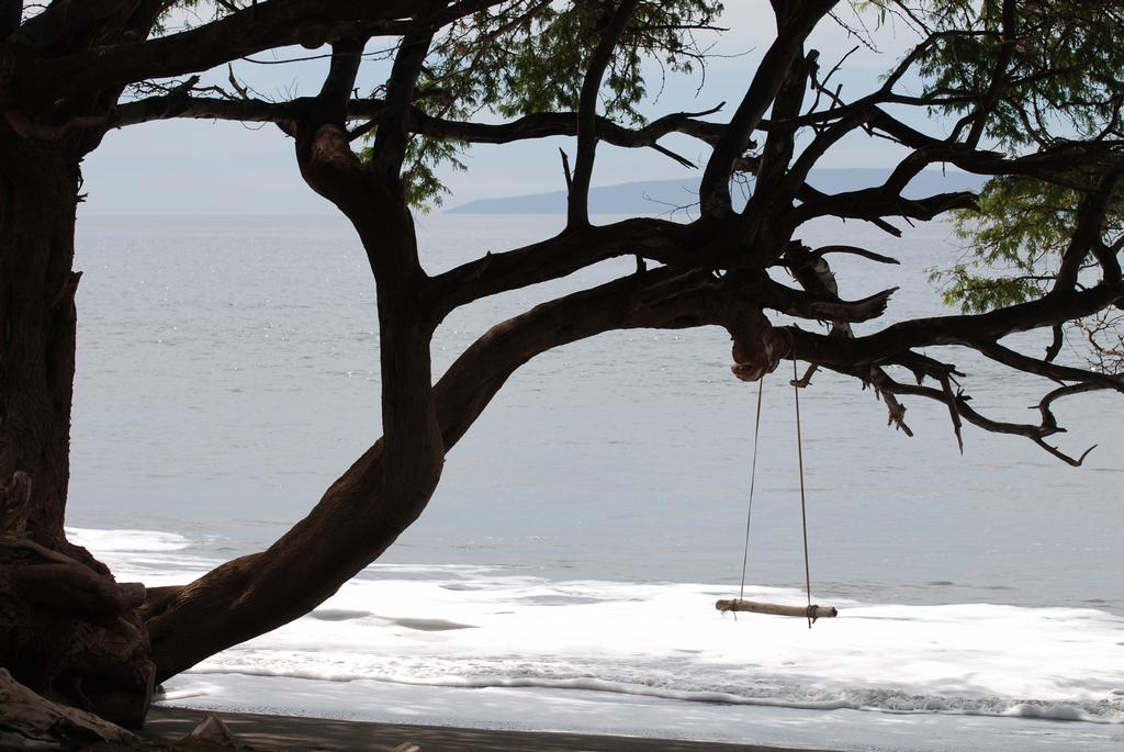 Swing over water from lucy rodgers photography in playa for Swing over water
