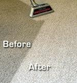 Steam Pro Carpet Cleaning - Homestead Business Directory