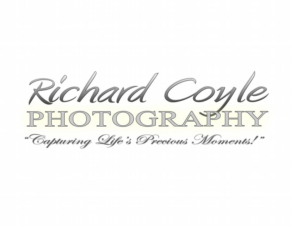Wedding photography taglines - Free Image gallery